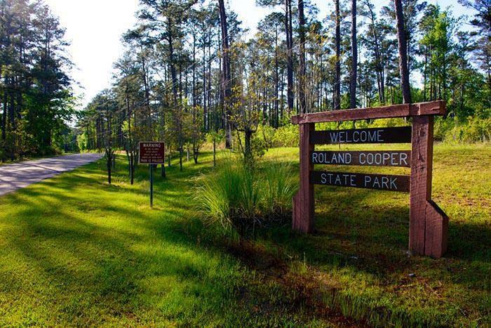 Facebook/Roland Cooper State Park Alabama