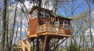 Sleep Underneath The Forest Canopy At This Epic Treehouse In Missouri