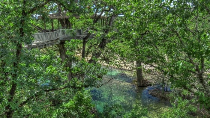 8 Of The Best Treetop Adventures To Take This Summer In Texas