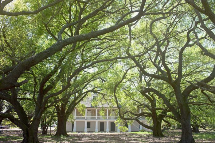 Best Affordable Road Trips From New Orleans - Inexpensive trips