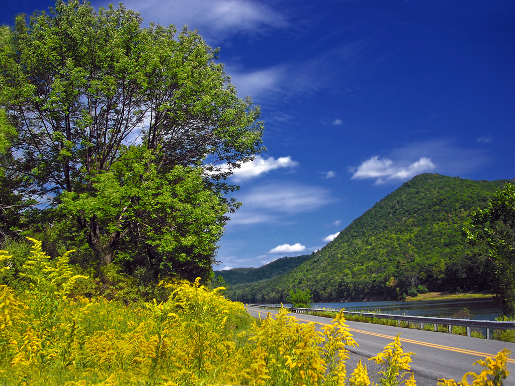 The 10 Best Backroads In Pennsylvania For A Long Scenic Drive