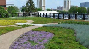 Almost Nobody Knows This Secret Rooftop Garden In Ohio Even Exists