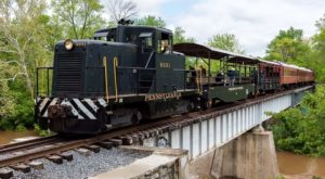 You'll Absolutely Love A Ride On This Majestic Train Near Baltimore This Summer