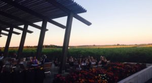 One Of The Best Wineries In America Is Right Here In Minnesota And You'll Want To Visit