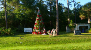 The Magical Place In Florida Where It's Christmas Year-Round