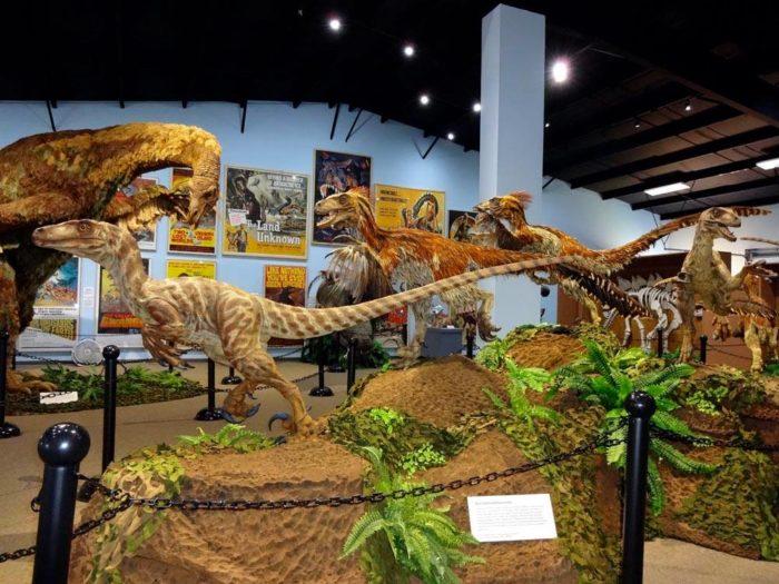Natural Science Museum Brisbane