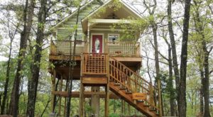Sleep Underneath The Forest Canopy At This Epic Treehouse In Arkansas