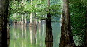 11 Places In Arkansas Where You Can't Help But Feel At One With Nature