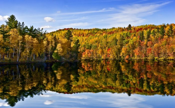 Scroll Through Smoky Mountains Map And You Ll Also See That They Predict Wisconsin S Fall Foliage To Peak Between The Weeks Of September 24th And October