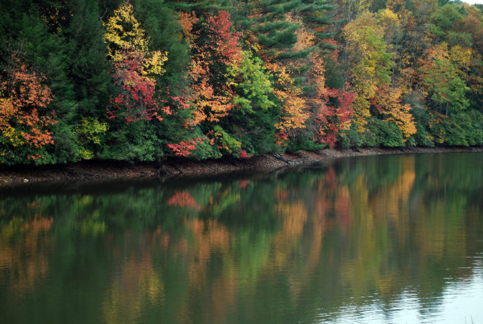 Fall Is Coming And Here Are The Most Beautiful Places To See Changing Leaves In West Virginia