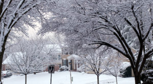 You May Not Like These Predictions About Virginia's Freezing Cold Upcoming Winter