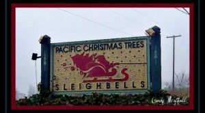 The Magical Place Near Portland Where It's Christmas Year-Round