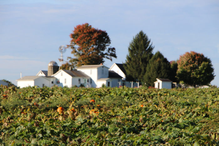 6 Greatest Places To Visit In Pennsylvania Amish Country