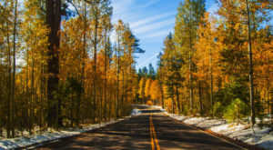 This Dreamy Road Trip Will Take You To The Best Fall Foliage In All Of Nevada