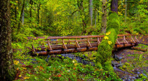 The Emerald Green Waterfall Trail Hiding In Oregon That's Too Beautiful For Words