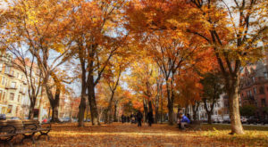 2017 Might Be The Best Year Ever For Fall Foliage In Massachusetts