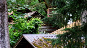 Most People Don't Know The Story Behind This Abandoned Town Near Portland