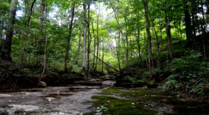 This One Easy Hike In Louisville Will Lead You Someplace Unforgettable