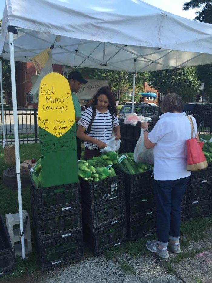 20 Best Farmers Markets In Chicago