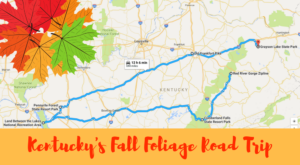 This Dreamy Road Trip Will Take You To The Best Fall Foliage In All Of Kentucky