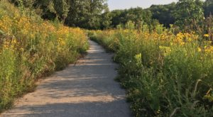 This One Easy Hike In Milwaukee Will Lead You Someplace Unforgettable