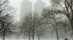 You're Going To Love These Predictions About Chicago's Mild Upcoming Winter