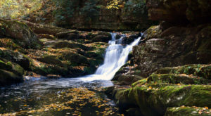 12 Amazing New Jersey Hikes Under 3 Miles You'll Absolutely Love