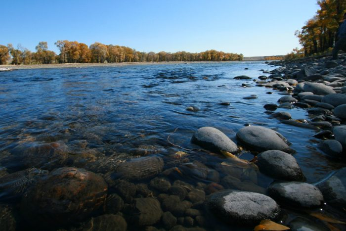 7 amazing natural wonders hiding in plain sight in montana for Yellowstone river fishing