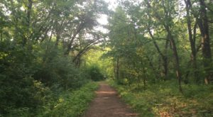 Escape The City With This Scenic Minneapolis Countryside Hike