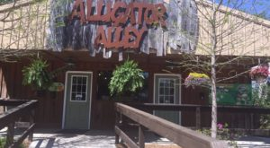 Visit This Alligator Farm In Alabama For A Truly Unique Experience