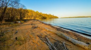 You May Not Want To Swim At This Maryland Beach This Summer Due To A Dangerous Discovery