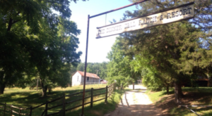 You Can Have The Adventure Of A Lifetime At This Arkansas Horse Ranch