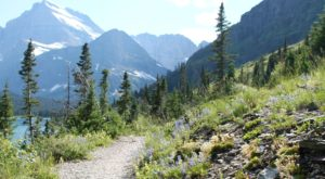 If There Are Only 5 Hikes You Ever Do In Montana, Make Them These