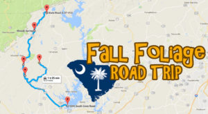 This Dreamy Road Trip Will Take You To The Best Fall Foliage In All Of South Carolina