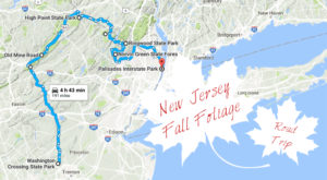 This Dreamy Road Trip Will Take You To The Best Fall Foliage In All Of New Jersey