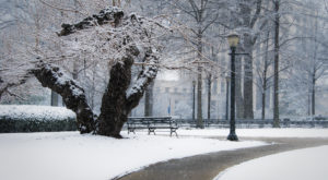 You May Not Like These Predictions About Alabama's Chilly Upcoming Winter