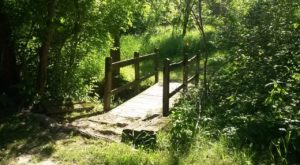 11 Trails In St. Louis You Must Take If You Love The Outdoors
