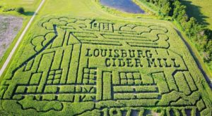 Get Lost In These 11 Awesome Corn Mazes In Kansas This Fall