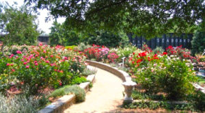 7 Natural Hidden Gems In Charlotte Most People Don't Know Even Exist