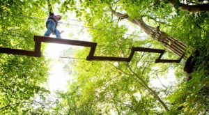 There's An Adventure Park Hiding Near Louisville And You Need To Visit