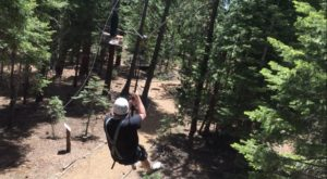 The Epic Zipline In Northern California That Will Take You On An Adventure Of A Lifetime