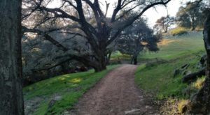 The Peaceful Farm Preserve In Southern California That's A Nature Lovers Paradise