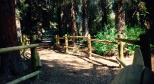 The Hidden Nature Trail In Southern California That Will Bring Out The Adventurer In You