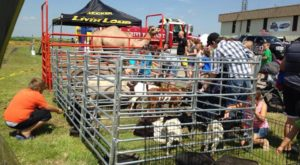 You'll Never Forget Your Trip To The Largest Petting Zoo In Oklahoma