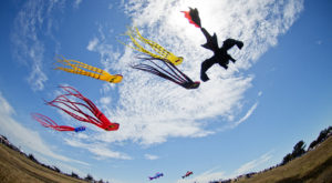 This Incredible Kite Festival In Oklahoma Is A Must-See