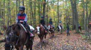 The Horseback Riding Trail Near Detroit That's Pure Magic