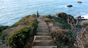 If There Are Only 5 Hikes You Ever Do In San Francisco, Make Them These