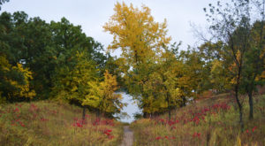 6 Short And Sweet Fall Hikes In North Dakota With A Spectacular End View