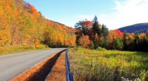 The Skyline Drive That Will Show You West Virginia's Fall Colors Like Never Before
