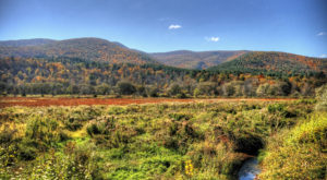 This Dreamy Road Trip Will Take You To The Best Fall Foliage In All Of Vermont